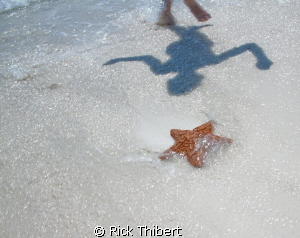 Dancing shadow and Starfish by Rick Thibert 